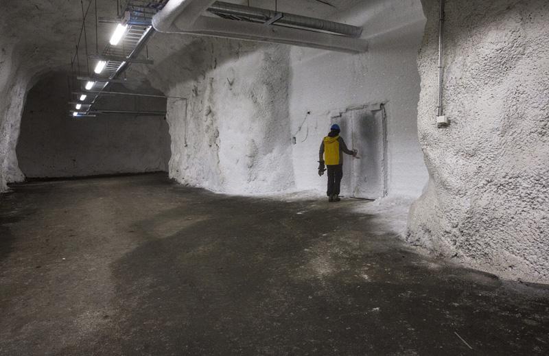 biobunker polo norte