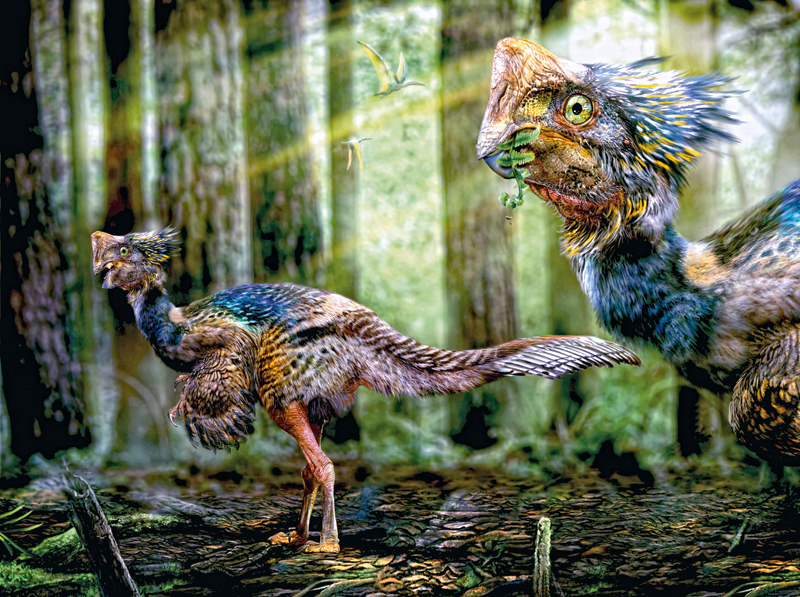 dinosaurios conocer naturaleza