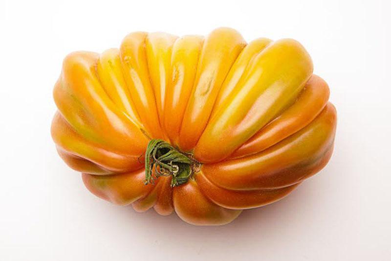 estilo, gourmet, tomates, tomatologia, cocina, tipos, xlsemanal