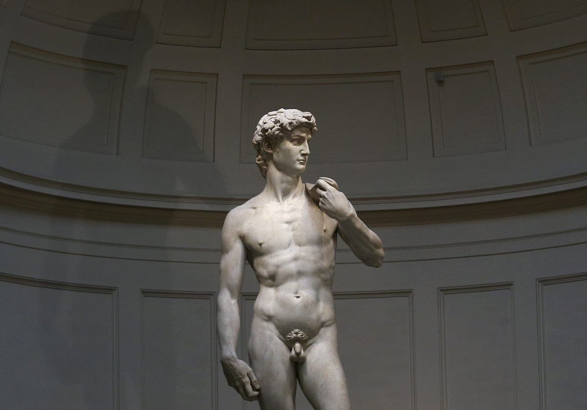 Michelangelo's statue of David is seen before a joint news conference by Italy's Prime Minister Matteo Renzi and Germany's Chancellor Angela Merkel at the Galleria dell'Accademia in Florence January 23, 2015. REUTERS/Alessandro Bianchi (ITALY - Tags: POLITICS SOCIETY)CODE: X90015