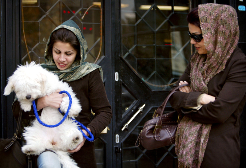 An Iranian woman stands in front of a bank as she holds a dog in Tehran November 13, 2005. The entrance of dogs and other pets into governmental buildings is prohibited in Iran. REUTERS/Morteza Nikoubazl