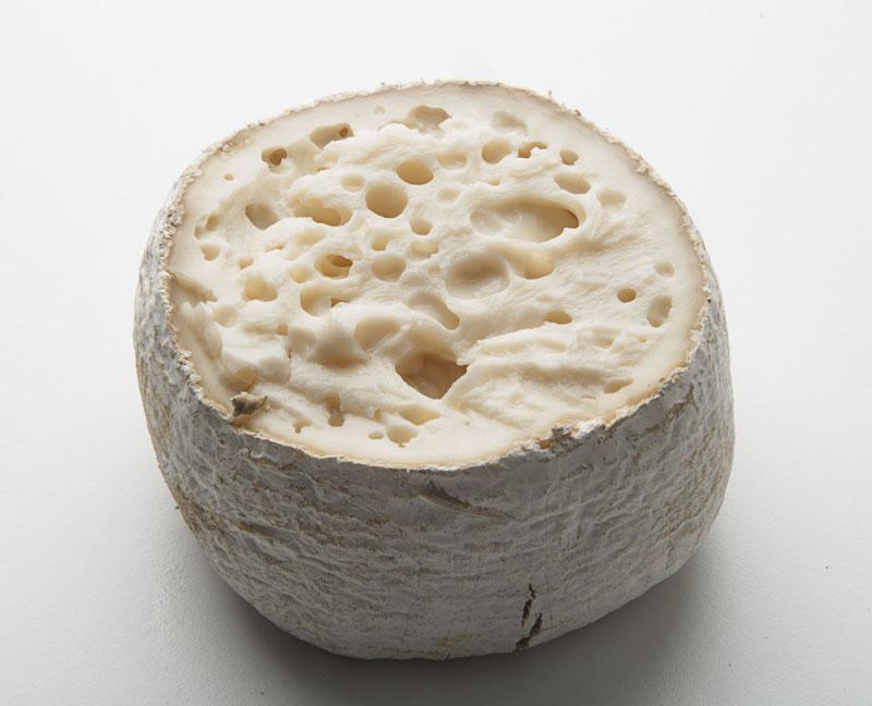 Queso Torta de Cañarejal de Pollos, Valladolid, elaborado con leche cruda de oveja y cuajo de flor de cardo, de textura cremosa y aroma intenso.