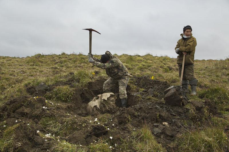 cazadores de mamuts, xlsemanal (7)