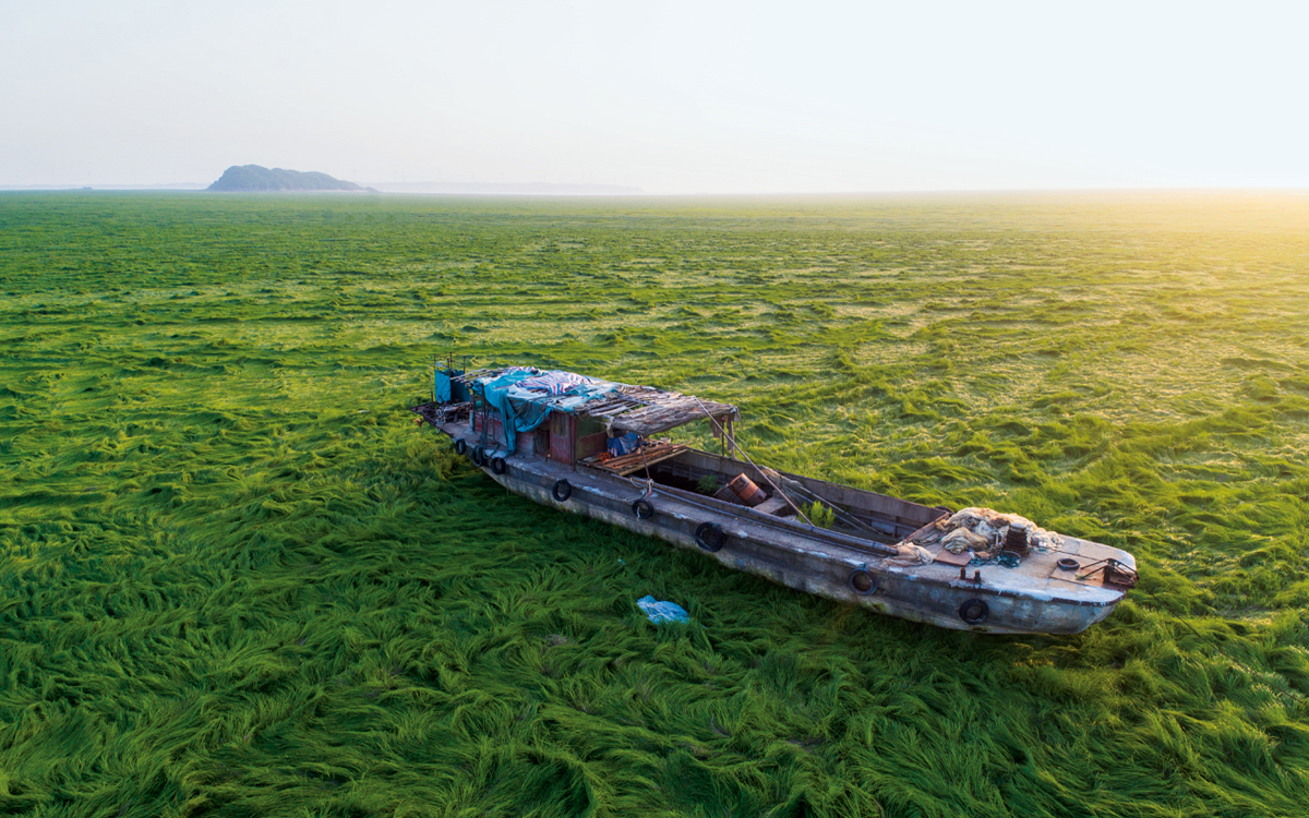 A boat is stranded on the grass-covered riverbed of the Poyang Lake hit by drought in Duchang county, Jiujiang city, east China's Jiangxi province, 17 April 2018.  Poyang Lake in Jiangxi Province, once the largest freshwater lake in China, is fast drying-up and might soon become a prairie or a desert like the Aral Sea in Kazakhstan due mostly to human ignorance. Chinese scientists are reporting with alarm that more parts of Poyang Lake have dried up leaving huge swathes of grassland in areas once inundated by up to 25 meters of water. That depth has been reduced on average to only eight meters and even this level is in danger since water levels have fallen continuously. ?Contacto