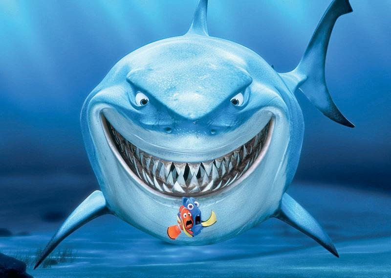 conocer, naturaleza, tiburon limon, bruce buscando a nemo, xlsemanal