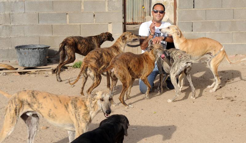 INSTALACIONES DE LA PROTECTORA DE ANIMALES SCOOBY EN MEDINA DEL CAMPO. Fran Jimenez