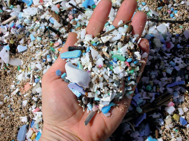 conocer, naturaleza, plasticos, xlsemanal
