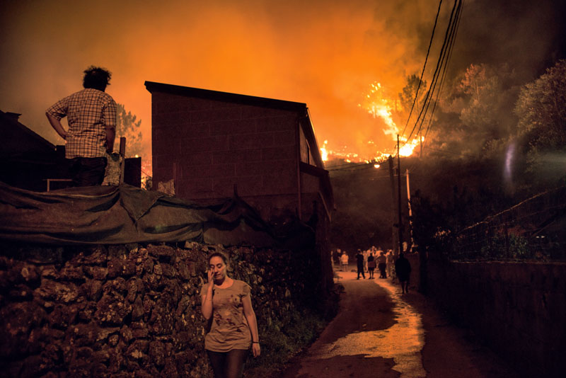 actualidad, galicia, incendios, motivos, terrorismo incendiario, xlsemanal, (2)
