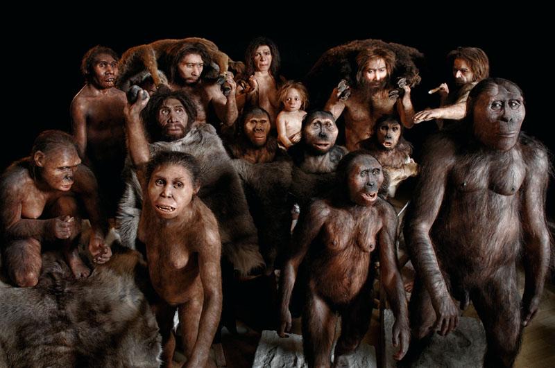 conocer, naturaleza, origen del hombre, evolución, antropologia, xlsemanal
