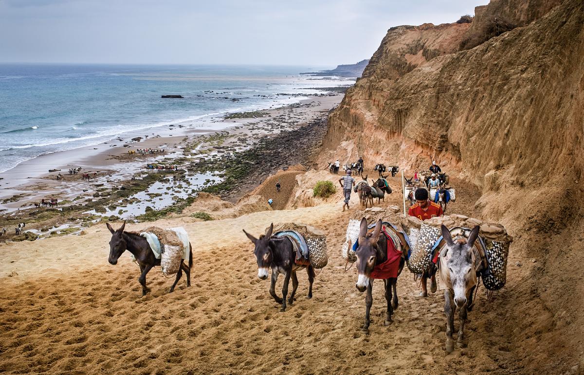 escasez de arena, saqueo de las playas