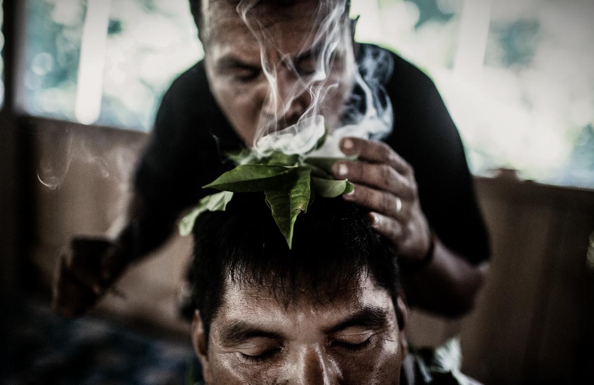 droga ayahuasca, el alucinogeno de moda (9)
