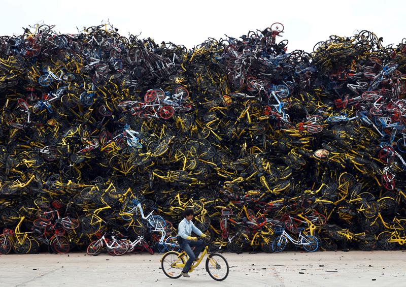 Alquiler de bicicletas negocio