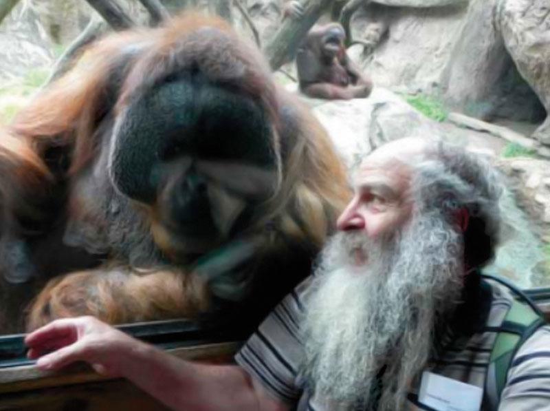 animales libertad zoo (3)