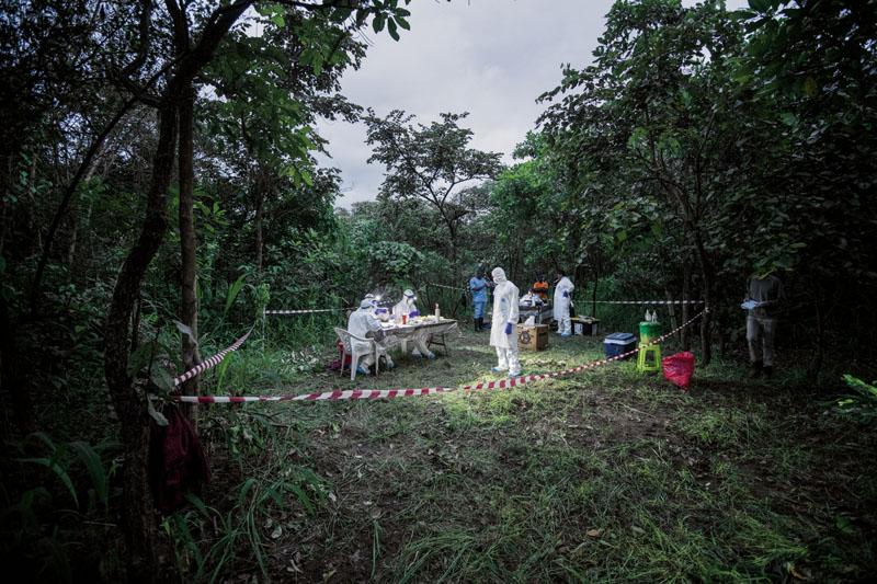 como frenar epidemias