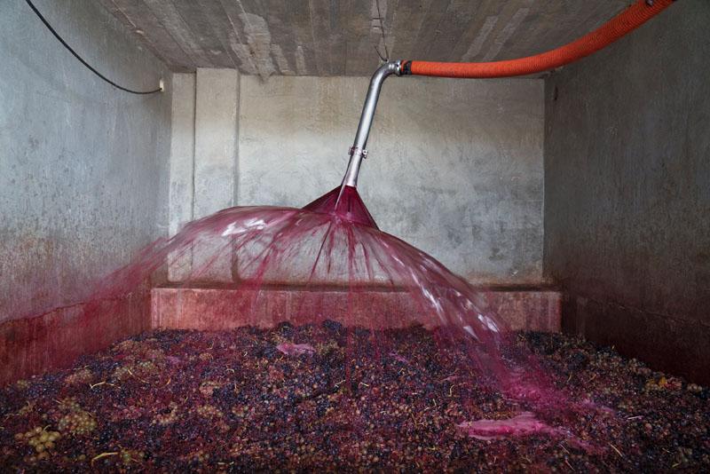 villabuena vino (1)