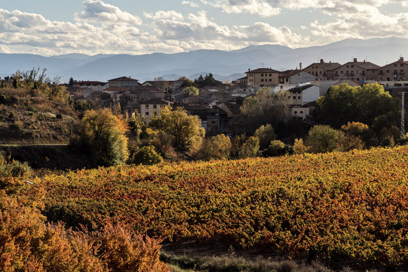 villabuena vino (2)