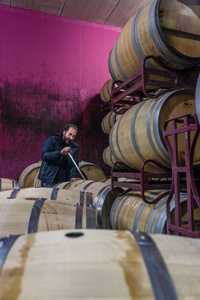 villabuena vino (7)