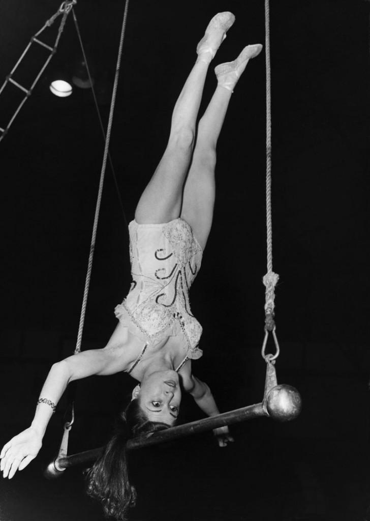 Historia del circo Pinito del oro