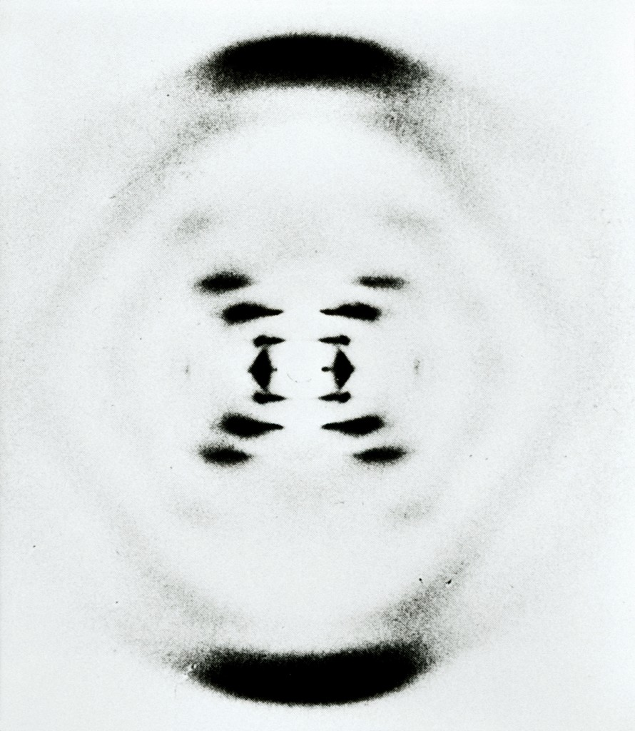 Rosalind Franklin's B-Form of DNA, 1953