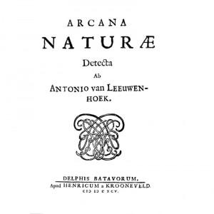 naturae espermatozoides