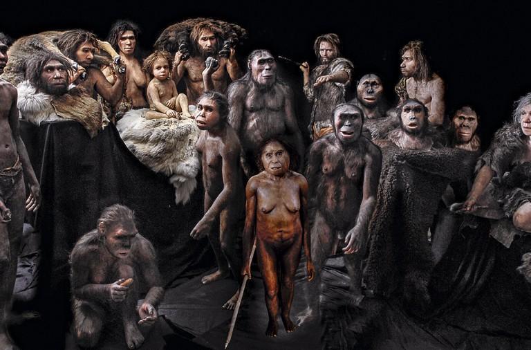 De Dónde Venimos Los Nuevos Parientes Del Homo Sapiens