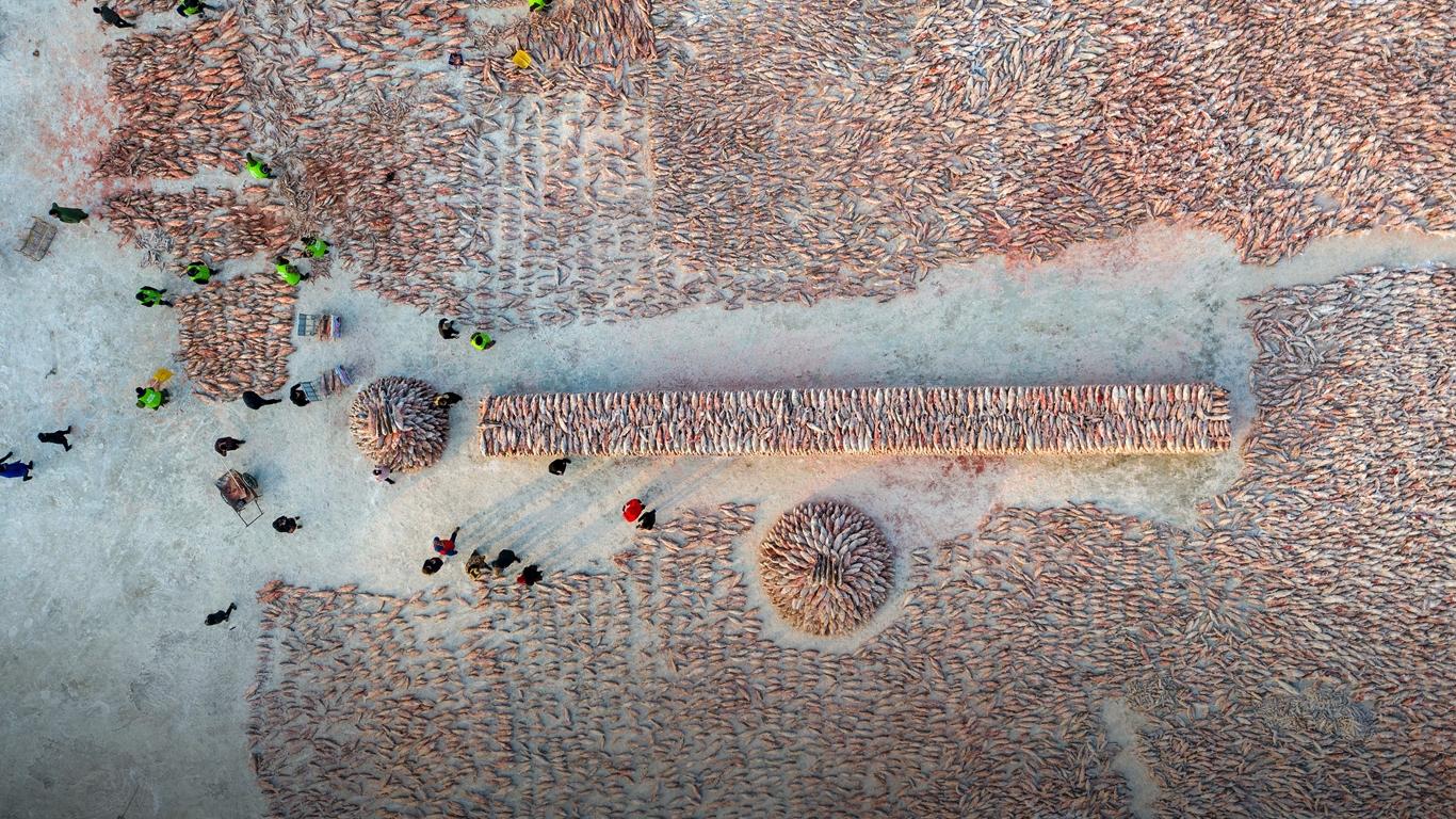 Guangcailun Simulaci/ón Gancho de Pesca se/ñuelo del Agua Salada de pl/ástico Duro swimbait Artificial de Agua Salada Dura SWIMBAIT Long Shot Peces de Cebo