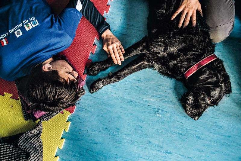 Perros y niños con autismo 5