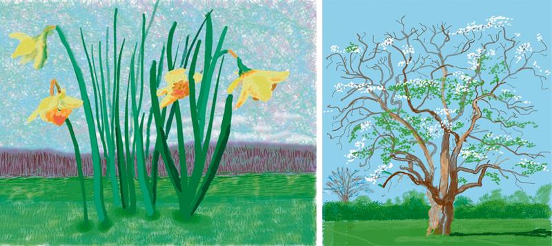 """David Hockney: """"Les haría un corte de mangas a todos los que dicen que el mundo se está yendo al garete"""" 7"""